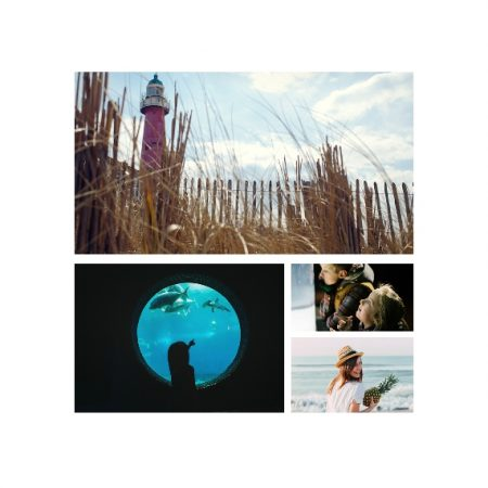 "4 Photo Collage 8x8"" Slim Photo Canvas Print, Home Décor White"