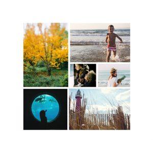 "6 Photo Collage 8x8"" Slim Photo Canvas Print, Home Décor White"